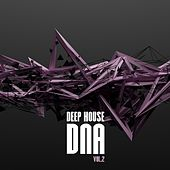 Deep House DNA, Vol. 2 by Various Artists