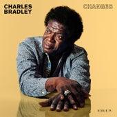 Ain't It a Sin - Single by Charles Bradley