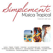 Play & Download Tropicales by Various Artists | Napster