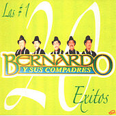 Play & Download 20 Exitos by Bernardo y sus Compadres | Napster