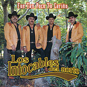 Play & Download Fue Tan Poco Tu Carino by Los Amables Del Norte | Napster