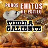 Play & Download Puros Exitos Al Estilo Tierra Caliente by Various Artists | Napster