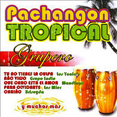 Play & Download Pachangon Tropical Grupero by Various Artists | Napster