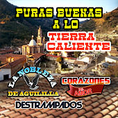 Play & Download Puras Buenas A Lo Tierra Caliente by Various Artists | Napster