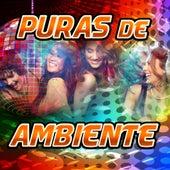 Play & Download 40 Grados - Puras De Ambiente by Concepto | Napster