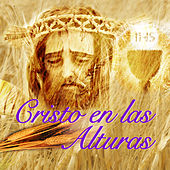 Play & Download Cristo En Las Alturas by Los Llayras | Napster