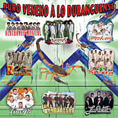 Play & Download Puro Veneno A Lo Duranguense by Various Artists | Napster