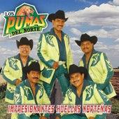 Play & Download Impresionantes Huellas Nortenas by Los Pumas Del Norte | Napster