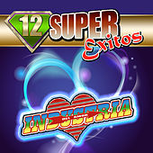 Play & Download 12 Super Exitos by Industria Del Amor | Napster