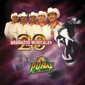 Play & Download 20 Aranazos Musicales by Los Pumas Del Norte | Napster
