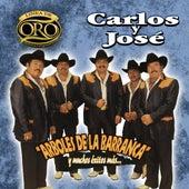 Play & Download Arboles De La Barranca Y Muchos Exitos Mas by Carlos Y Jose | Napster