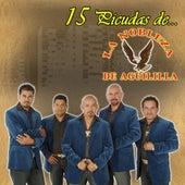 Play & Download 15 Picudas Con La Nobleza De Aguililla by La Nobleza De Aguililla | Napster