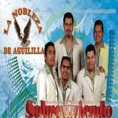 Play & Download Sobreviviendo by La Nobleza De Aguililla | Napster