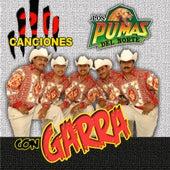 Play & Download 20 Canciones Con Garra by Los Pumas Del Norte | Napster