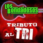 Tributo Al Tri by Los Bondadosos