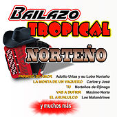Bailazo Tropical Norteno by Various Artists