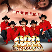Play & Download No Puedo Olvidarte by Oro Norteno | Napster