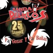 Play & Download Pa' Gozar Y Pa' Bailar by Banda Pelillos | Napster