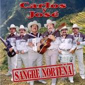 Play & Download Sangre Nortena by Carlos Y Jose | Napster