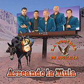 Play & Download Arreando La Mula by La Nobleza De Aguililla | Napster