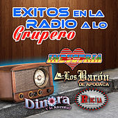 Play & Download Exitos En La Radio A Lo Grupero by Various Artists | Napster