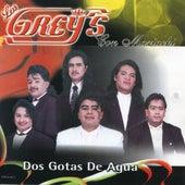 Dos Gotas De Agua, Vol. 2 by Los Grey's