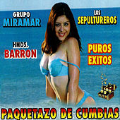 Play & Download Paquetazo De Cumbias - Puros Exitos by Various Artists | Napster