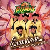 Play & Download Enamorate Con Sus Mejores Boleros by Los Pumas Del Norte | Napster
