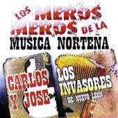 Los Meros, Meros De La Musica Nortena by Various Artists