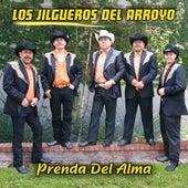 Play & Download Prenda Del Alma by Los Jilgueros Del Arroyo | Napster