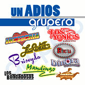 Play & Download Un Adios Grupero by Various Artists | Napster