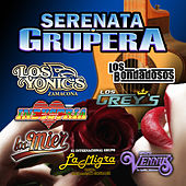Play & Download Serenata grupera by Various Artists | Napster
