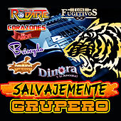 Play & Download Salvajemente Grupero by Various Artists | Napster