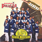 Play & Download 15 Kilates Musicales by Banda Pelillos | Napster