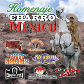 Play & Download Homenaje Al Charro De Mexico by Various Artists | Napster