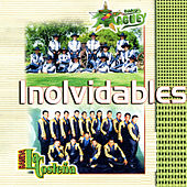 Play & Download Inolvidables by Banda La Costena | Napster