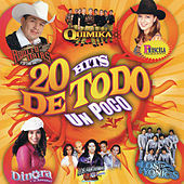 20 Hits De Todo Un Poco by Various Artists