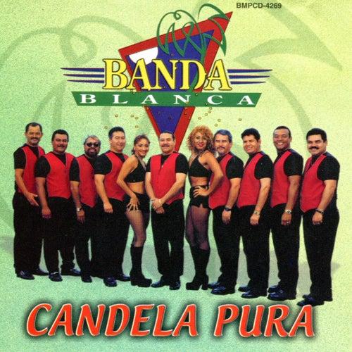 Play & Download Candela Pura by Banda Blanca | Napster