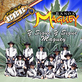 Play & Download Y Sigue Y Sigue Maguey by Banda Maguey | Napster