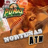 Play & Download Nortenas A.T.M by Los Pumas Del Norte | Napster