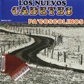 Play & Download Pa' Coscolinos by Los Nuevos Cadetes | Napster