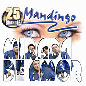 Play & Download Mirada De Amor by Mandingo | Napster