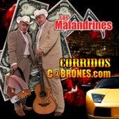 Corridos C@brones by Los Malandrines