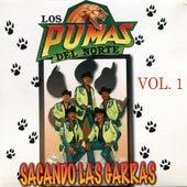 Play & Download Sacando Las Garras, Vol. 1 by Los Pumas Del Norte | Napster