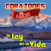 La Ley De La Vida by Corazones Del Amor