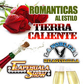 Play & Download Romanticas Al Estilo Tierra Caliente by Various Artists | Napster