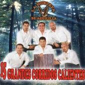 Play & Download 15 Grandes Corridos Calientes by La Nobleza De Aguililla | Napster