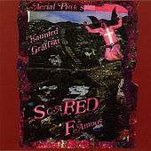 Scared Famous by Ariel Pink's Haunted Graffiti