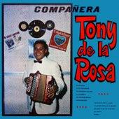 Compañera by Tony De La Rosa