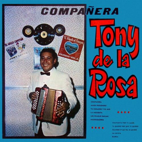 Play & Download Compañera by Tony De La Rosa | Napster